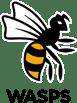 Wasps_Logo_Light_Background_RGB