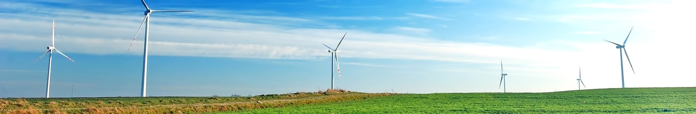 insight-header-windfarm-2